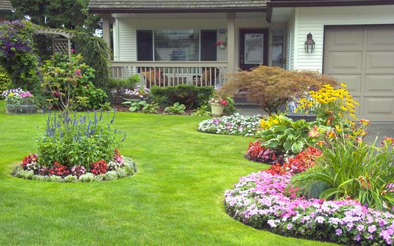 start tips flower garden in front of the house